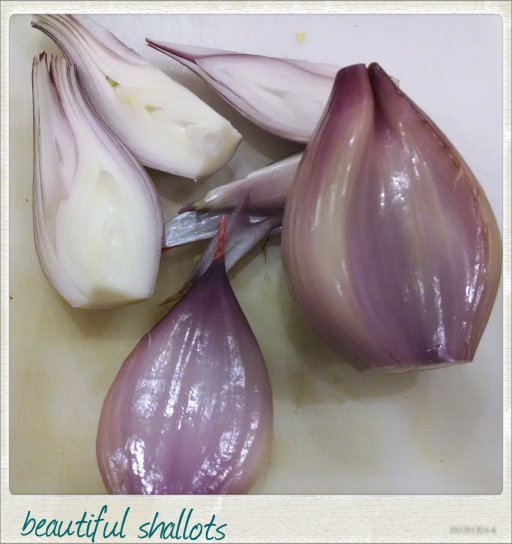 beautiful shallots