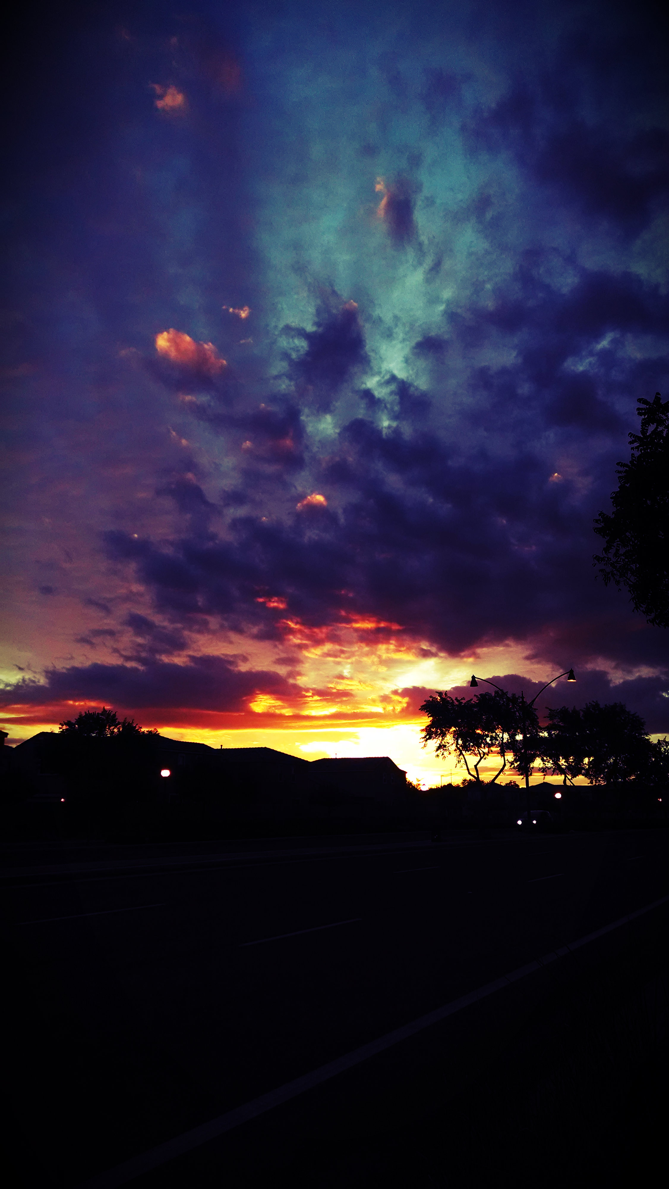 Arizona Evening